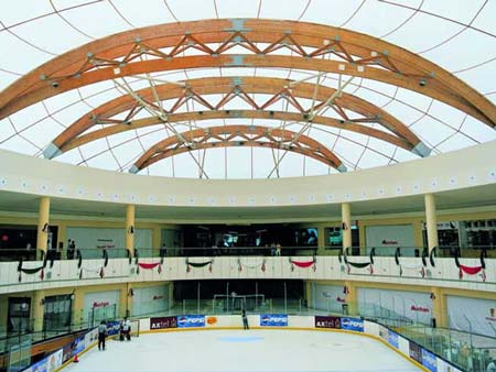 Ice Rink, Teflon-coated-Fiberglas